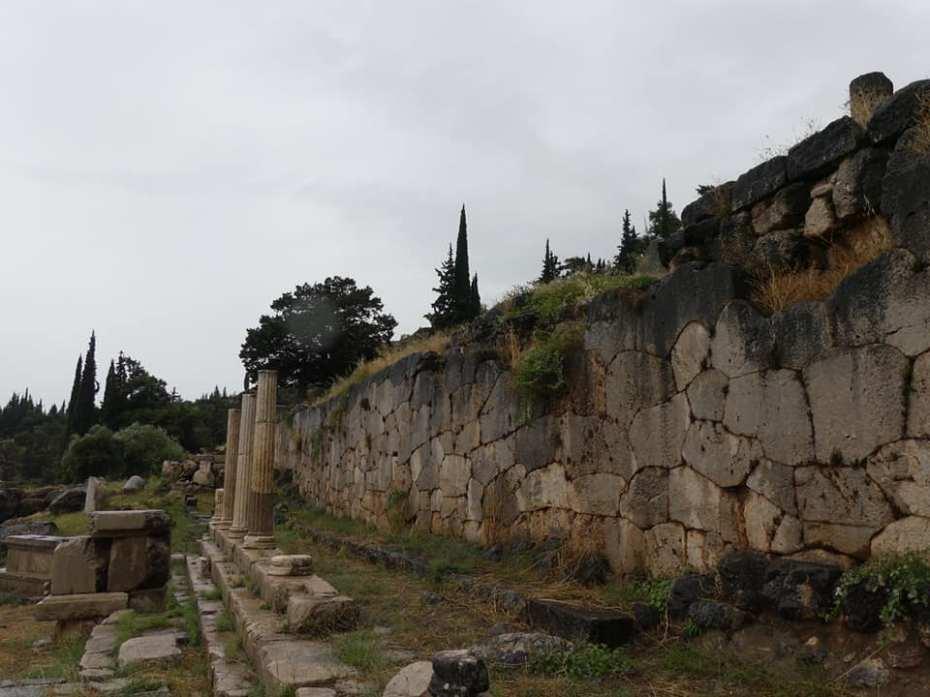 Delphi 8