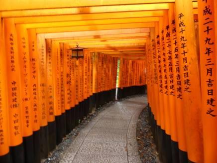 Kyoto 5