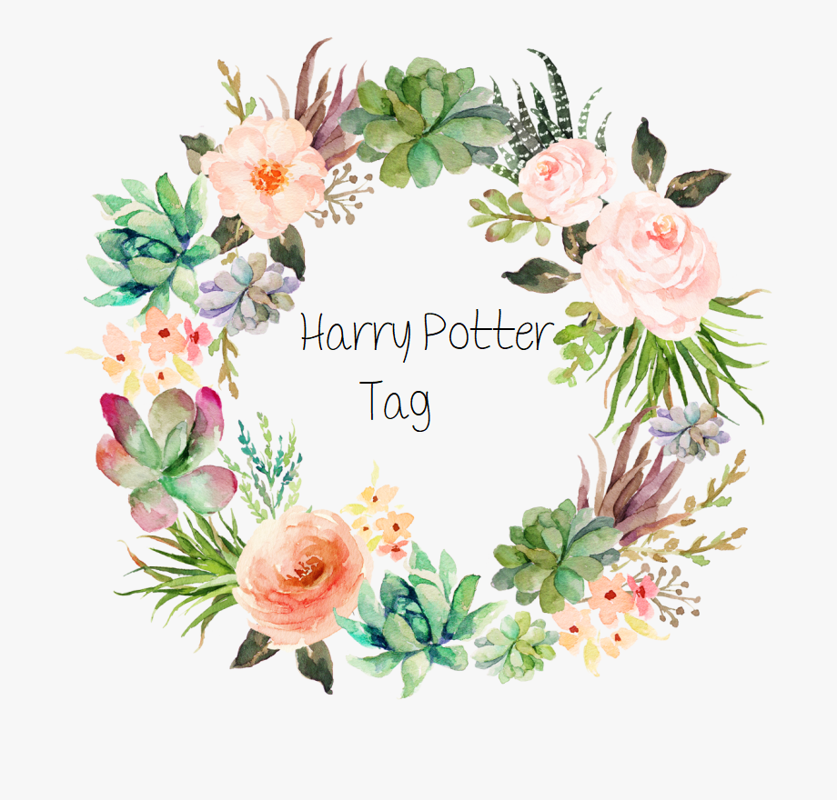 The Harry Potter BookTag