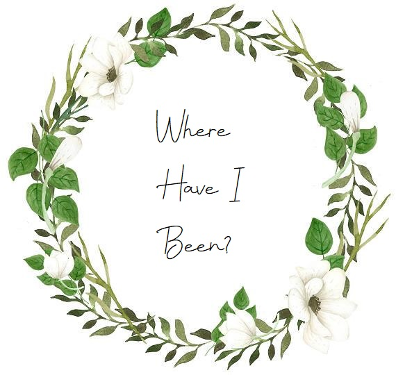 Where have Ibeen?